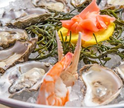 White Oak Oyster cheap Bar NYC 365 Guide New York City