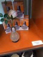 eine Blühbirne :-)