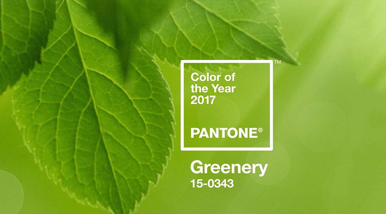 Divat lett a természet, avagy a lombzöld a 2017-es év színe a Pantone szerint