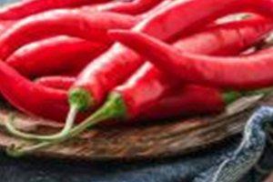 Υγιεινή διατροφή: Τα πέντε βασικά... συστατικά