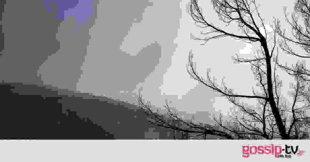 Φωτιά Εύβοια: Τραγικός απολογισμός 25.000 καμένα στρέμματα δάσους - Μάχη με τις αναζωπυρώσεις