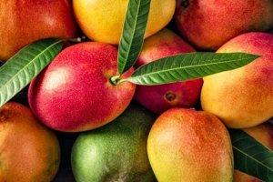 Let's Mango! 7 facts που θα σε πείσουν ότι το μάνγκο είναι το απόλυτο Food Must