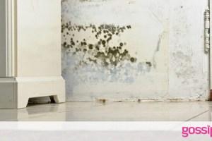 Πώς να διώξετε την υγρασία από το σπίτι σας