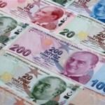 Συνεχίζει τη βουτιά η τουρκική λίρα
