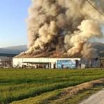 ΥΦΑΝΤΗΣ: Ολοσχερής καταστροφή από φωτιά στο εργοστάσιο των Τρικάλων