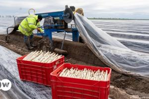 Εποχικοί εργάτες στον κυκλώνα της πανδημίας | DW | 05.05.2021