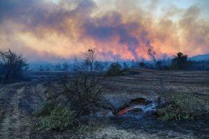 Τουρκία: Ένας νεκρός από τη δασική πυρκαγιά που μαίνεται για δεύτερη ημέρα στα νότια της χώρας