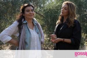 Η Γη της Ελιάς: Η Μαργαρίτα είναι σίγουρη πως ο Αλέξης έχει αυτοκτονήσει