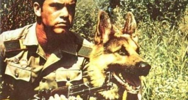 Ето какво се случи с граничарското куче което плачеше за водача си