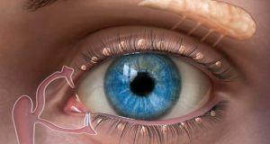 Този лек възвръща ясното зрение за 4 дни! 99% от хората не знаят за това!