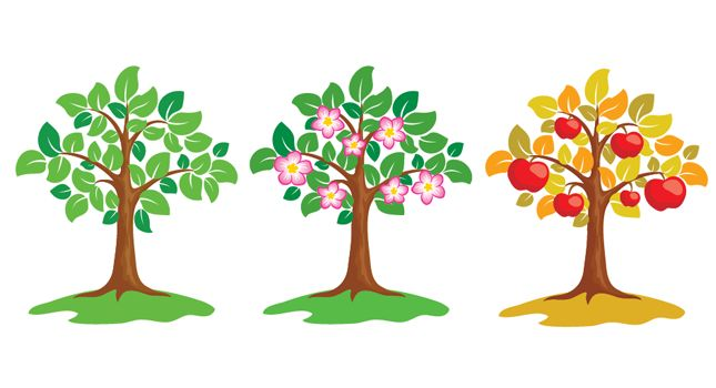 free vector apple tree