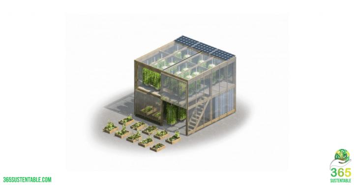 La Granja de Impacto Produce hasta 6 Toneladas de alimentos al año