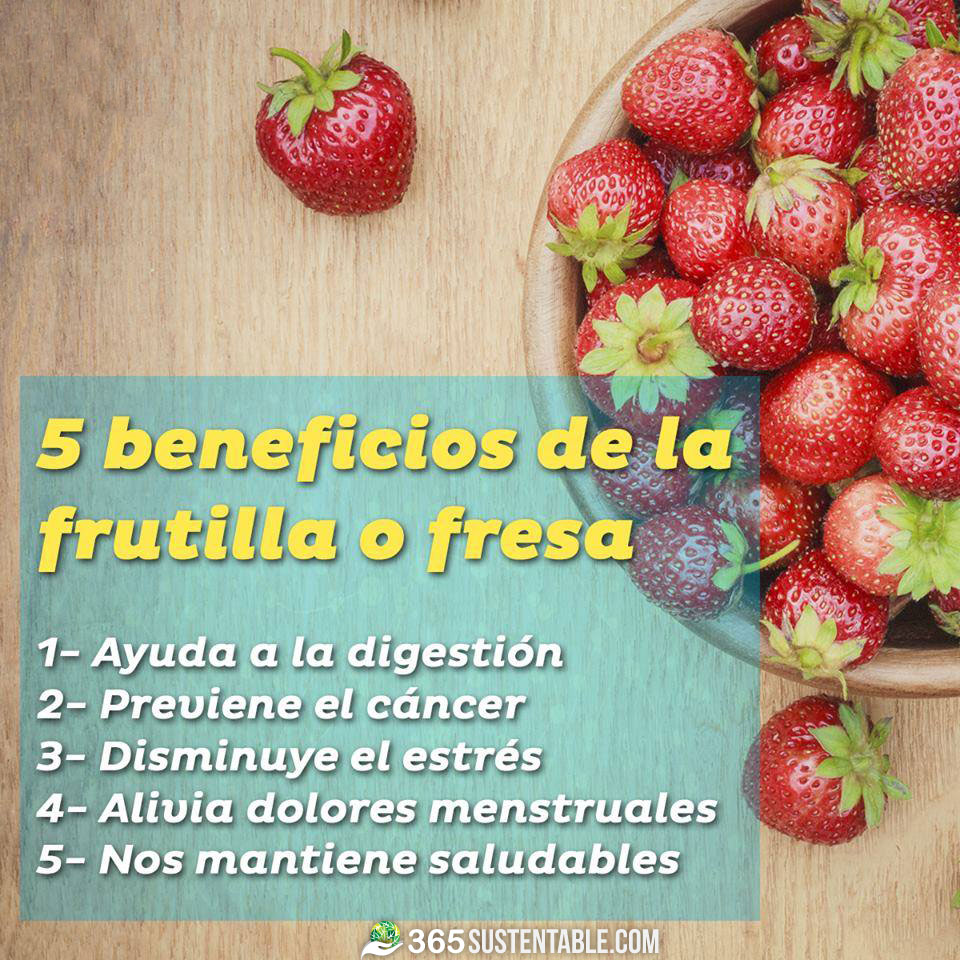 beneficios-fresa-frutillas