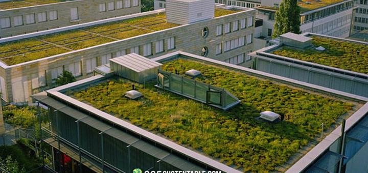En Francia una nueva ley obliga a construir edificios con tejados verdes