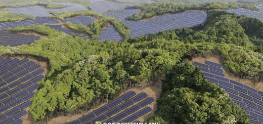 Japón convierte campos de golf abandonados en plantas de energía solar