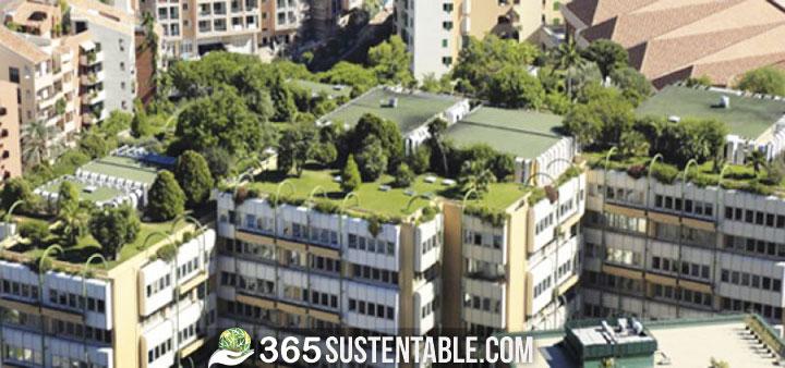 techos-verdes-francia