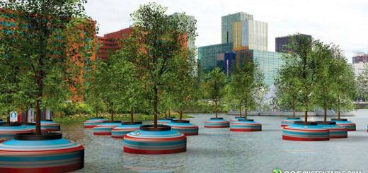 Proyectan Bosque Sustentable en Rotterdam