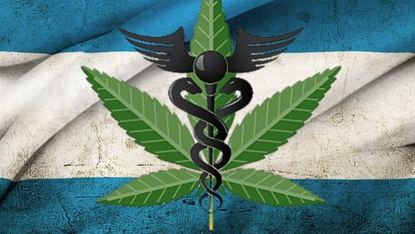 Ya es ley en Argentina el uso terapéutico del cannabis