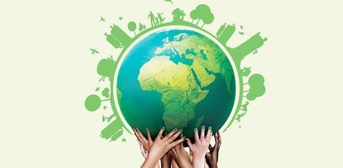 5 Hábitos sustentables para cuidar nuestro planeta.