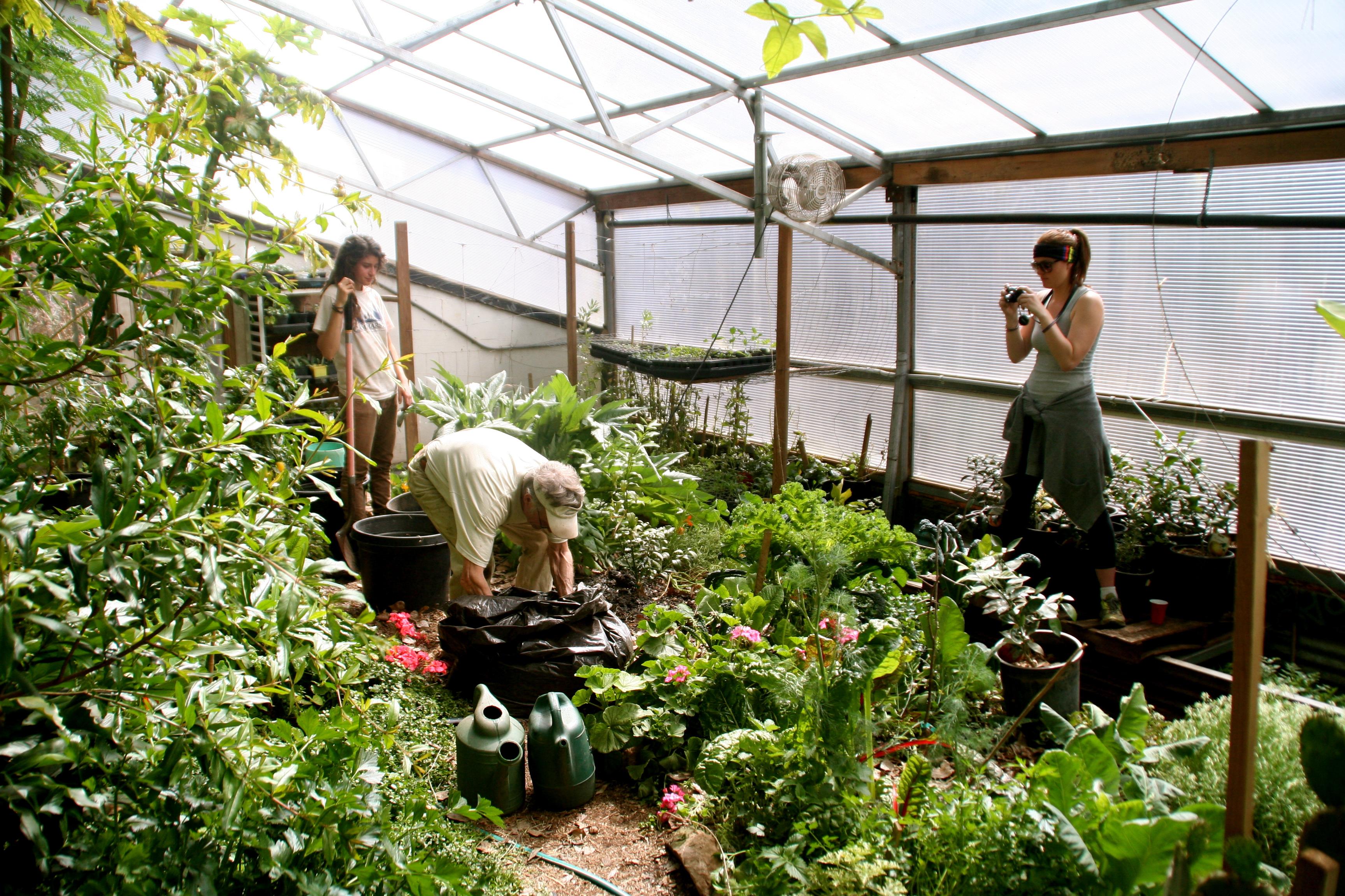 Los individuos toman papeles de liderazgo al tomar responsabilidad en algún aspecto, como jardinería o facilitación de las juntas.