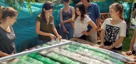 Construir un Calefon Solar