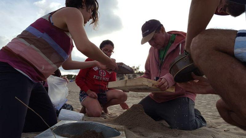 Playas de Buenos Aires contaminadas con todo tipo de plásticos