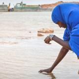 La ONU alerta sobre el cambio climático