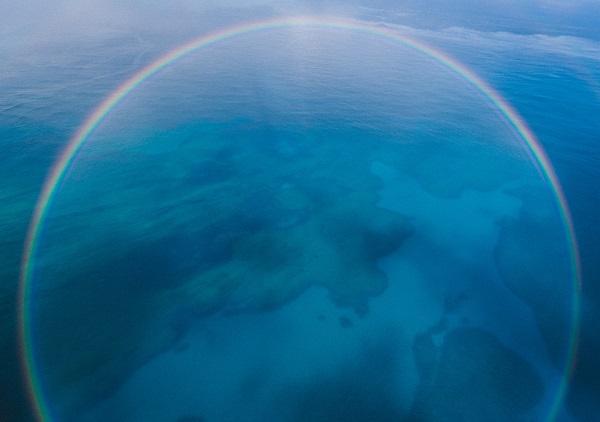 La refracción nos da los colores del arcoíris y la reflexión su forma