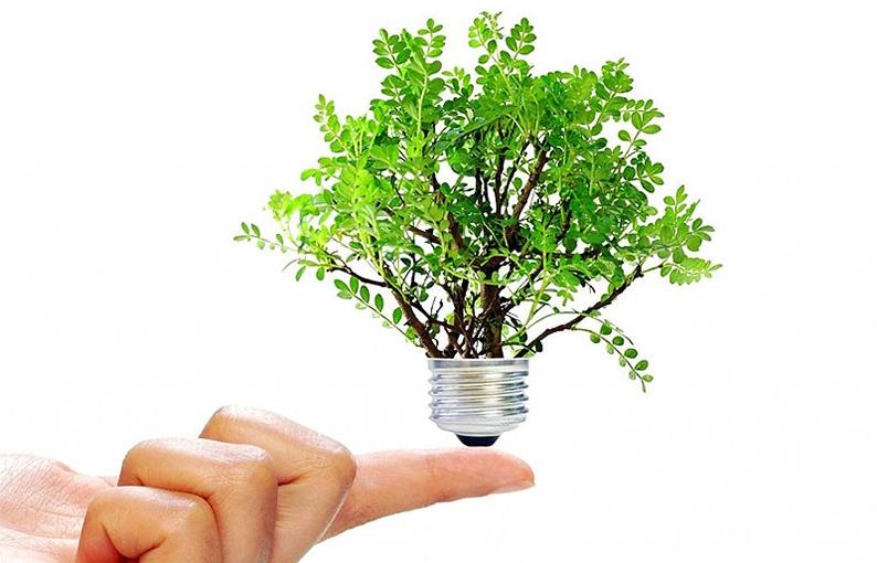 Contrario de lo que muchos piensan, la eficiencia energética está al alcance de nuestra mano.