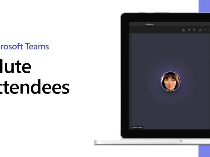 Hoe kan je in Microsoft Teams deelnemers 'muten'?