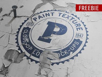 Freebie Old Paint Close-up Logo Mock-up