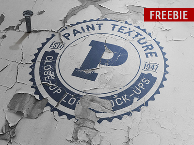 Freebie Old Paint Close-up Logo Mock-up