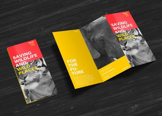 Free Premium Z-Fold Brochure Mockup