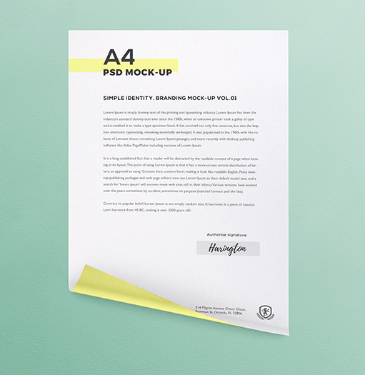 Curly A4 Paper Mock-up