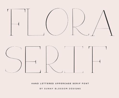 Flora Serif Display Font