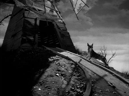 Still from Frankenweenie (1984)