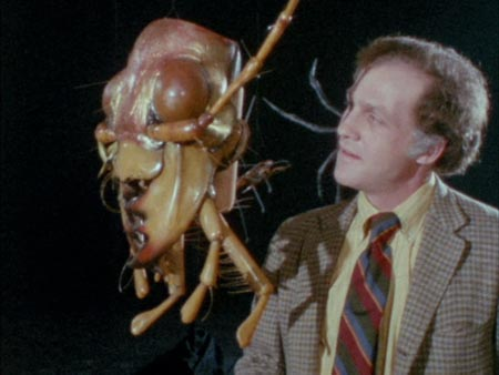 Still from The Hellstrom Chronicle (1971)