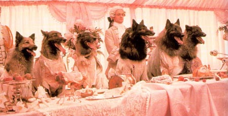 Still from The Company of Wolves (1984)