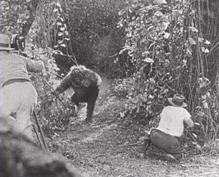 Still from Ingagi (1930)