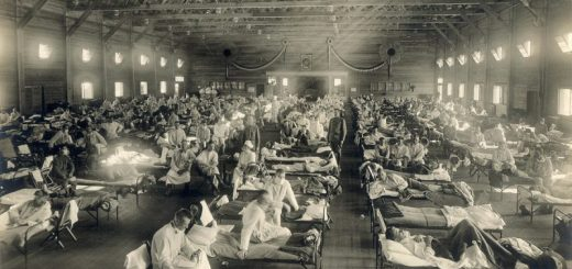 The 1918 Influenza Epidemic