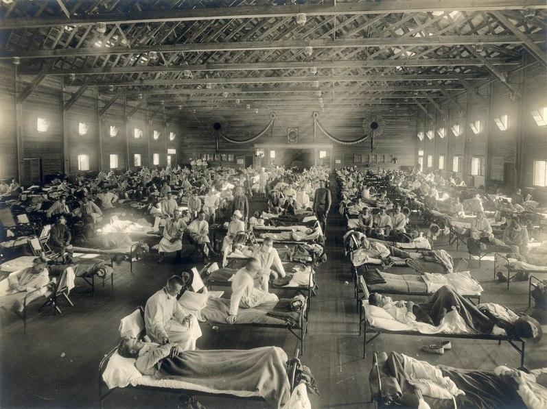 The 1918 Influenza Epidemic