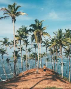 cerveau en vacances eau et île