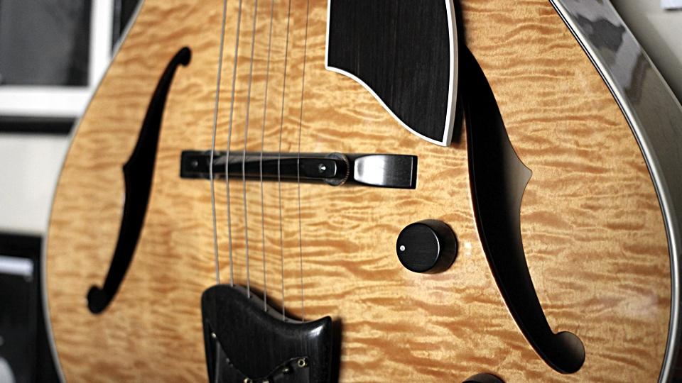 Fender Hollow Body