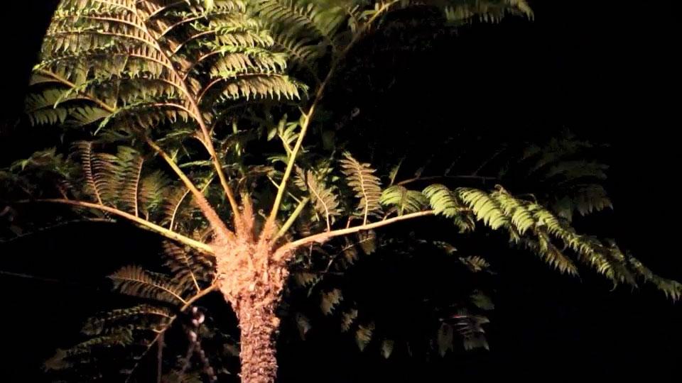 one-windy-night-20131005am
