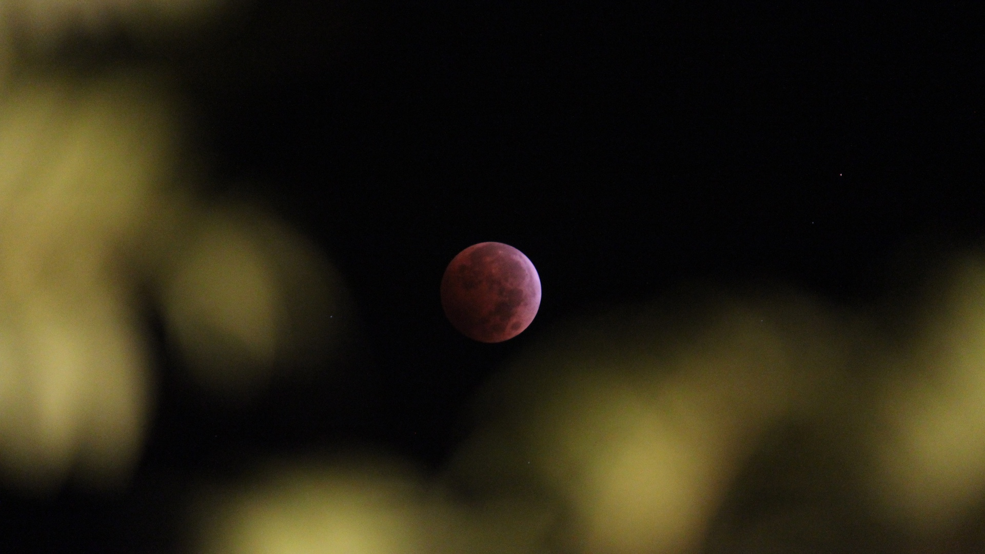 Blood Moon 20141008 3