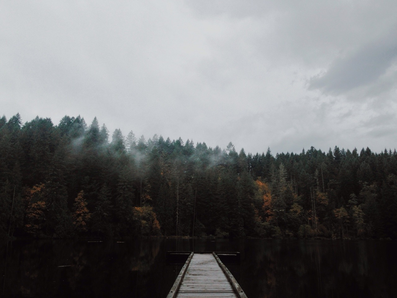 Never Fall In Love Wallpaper Photography Pacific Northwest Photographers On Tumblr Pnw
