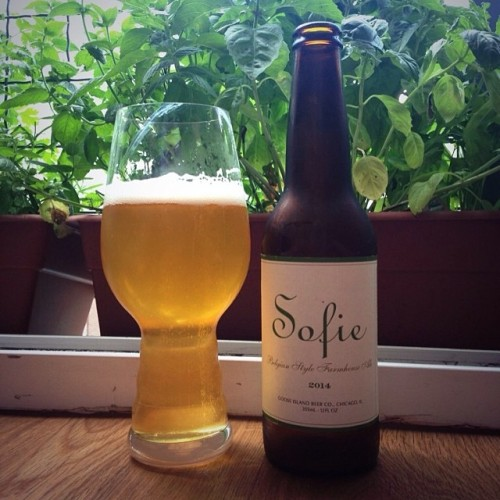 Drinking a Sofie for #beerclub this week and getting ready to pick all that mint and basil in the background for a pesto! Yay cooking and beer :) @gooseislandbeer<br /> #drinkandspoon #beer #basil #mint #cook #cooking #beerporn #craftbeer #instabeer #instagood #instafood #foodporn