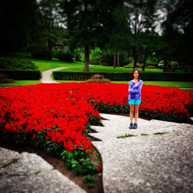 Maple Leaf shaped garden at High Park