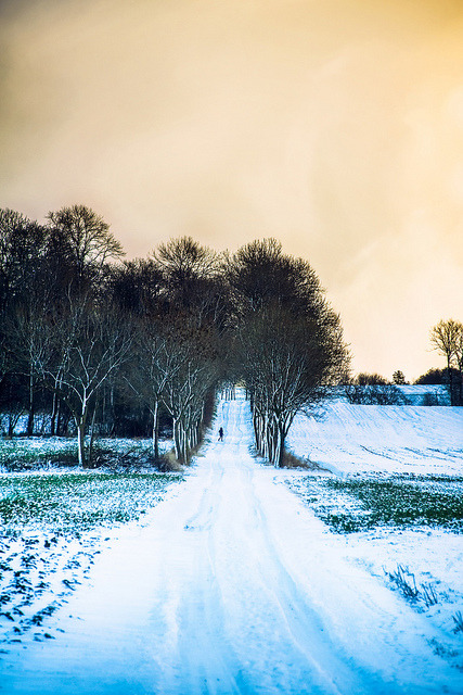 brutalgeneration:</p> <p>Snow white road by Appe Plan on Flickr.</p> <p>Peace.<br /> Quiet.<br /> So hard to come by<br /> these days.<br /> A walk alone in the snow.<br /> What can be more perfect?