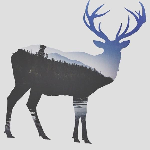 Tumblr Art Drawings Deer